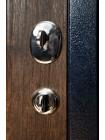 Дверь ТС 04.1